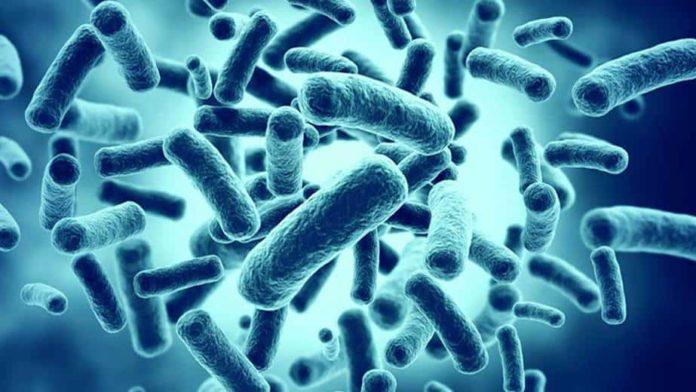 probiotikai